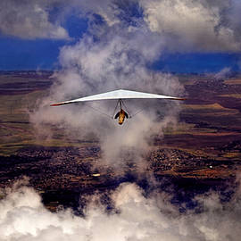 Soaring Through The Clouds by Susan Rissi Tregoning