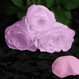 Johanna Hurmerinta - Soft Roses On Velvet