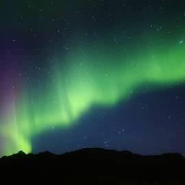 David Broome - Softly Dancing Mountain Aurora
