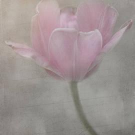 Teresa Wilson - Softly She Whispers