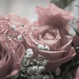 Softness of Love - Betsy Knapp