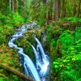 Sol Duc Falls by Don Mercer