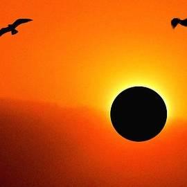 Romuald  Henry Wasielewski - Solar Eclipse