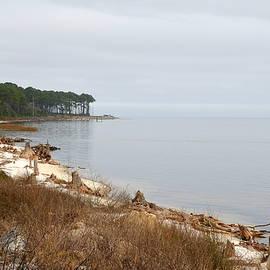 Carla Parris - Solitude on the Florida Gullf Coast