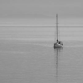 Solo Sailing by Inge Riis McDonald