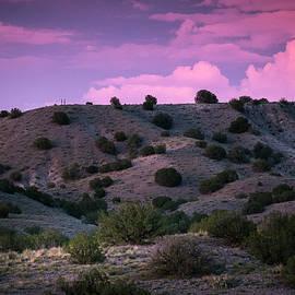 Mary Lee Dereske - Sometimes Skies Really Are Pink