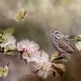 Cathy Kovarik - Song Birds and Butterflies
