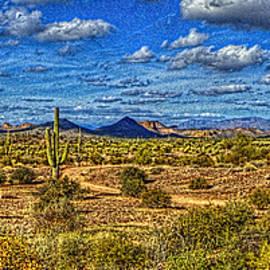 Sonoran Panorama by Roger Passman