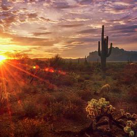 Sonoran Sunrise Is Calling  by Saija Lehtonen