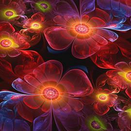 Diana Coatu - Soul Of Flowers