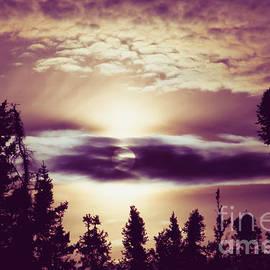 Sharon Mau - Sound of the Sun
