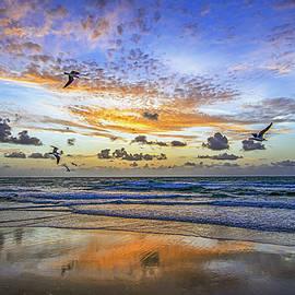 Steve Lipson - South Beach 12260