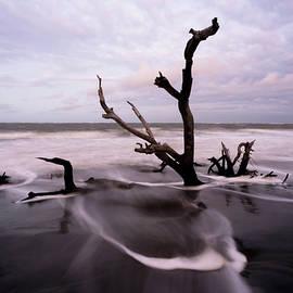 Serge Skiba - South Carolina Coastline