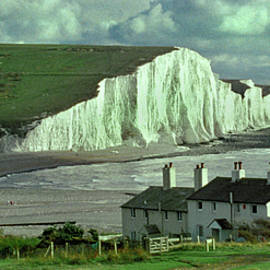 South Downs Chalk Cliffs by Jerry Griffin