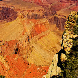 South Rim Of Grand Canyon by Bill Barber