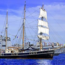 Miroslava Jurcik - Southern Swan And Army Ship