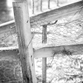 Spading Fork On Chicken Wire Fence in Black and White - YoPedro