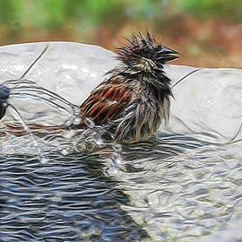 Ericamaxine Price - Sparrow Bath Time 9242