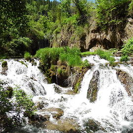Spearfish Canyon Waterfalls by Pamela Pursel