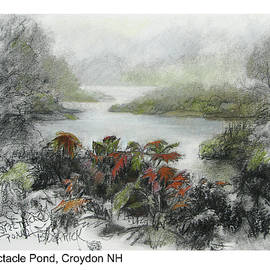 Spectacle Pond by Betsy Derrick