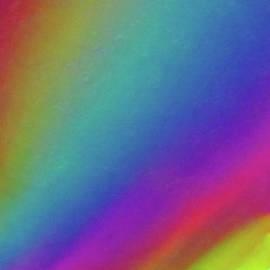 Rob Mandell - Spectrum