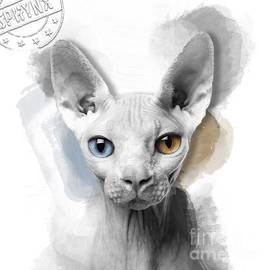 Sphynx Kitten No 02 by Mia Stedt
