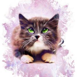 Kathy Kelly - Spice Kitty