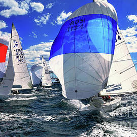 Kaye Menner - Spinnakers and Sails by Kaye Menner