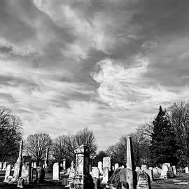 Spirit in the Sky by Brenda Conrad