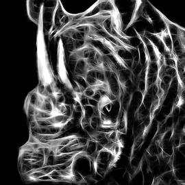 Spirit of the White Rhino by Michael Durst