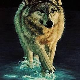 Kevin Ballew - Spirit of the Wild