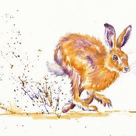 Splash - Sprinting Hare by Debra Hall