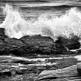 Splash by Maria Coulson