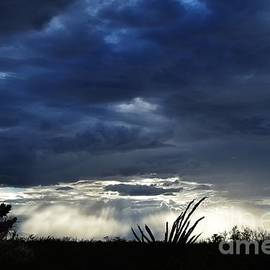 Splendor In The Storm by Janet Marie