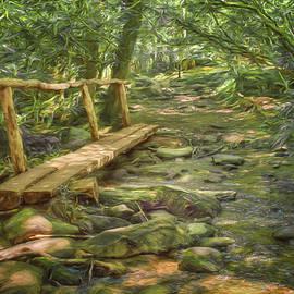 Nikolyn McDonaldFootbridge - Great Smoky Mountains - Split Log Bridge - Great Smoky Mountains