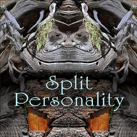 Split Personality by Becky Titus