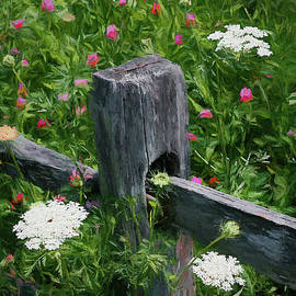 Mike Nellums - Split Rail and Wildflowers