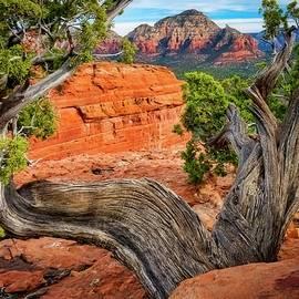 Flying Z Photography By Zayne Diamond - Split View, Capital Butte, Sedona, Arizona