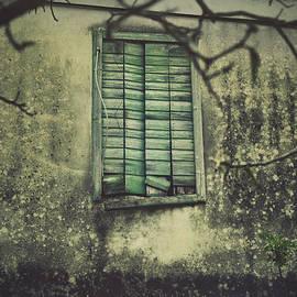 Mythja Photography - Spooky window