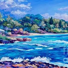 Spotts Coastline - John Clark