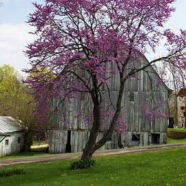 Spring Barn by Jeff Roney