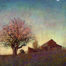 R christopher Vest - Spring Barn On The Hill