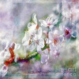 Jean OKeeffe Macro Abundance Art - Spring Blossoms