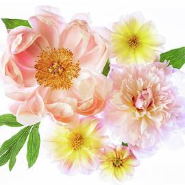 Jerri Moon Cantone - Spring Flowers