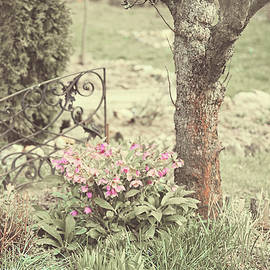 Jenny Rainbow - Spring Garden Pastel