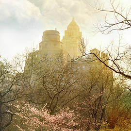 K Powers Photography - Spring in Central Park