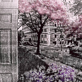 Spring in the City by Susan Maxwell Schmidt