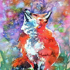 Spring is in the air - red fox - Kovacs Anna Brigitta