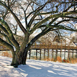 Spring Lake bridge in winter series II by Geraldine Scull