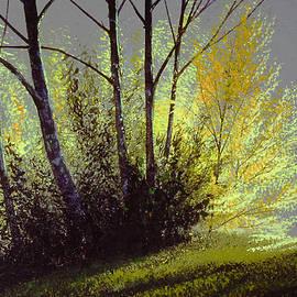 Spring Light by Frank Wilson